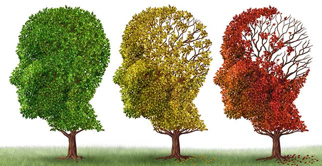 7 Soorten Voeding & Supplementen die de ziekte van Alzheimer helpen bestrijden