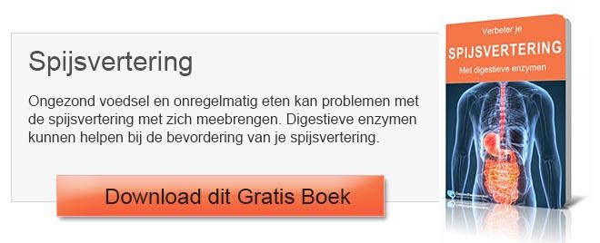E-boek spijsvertering