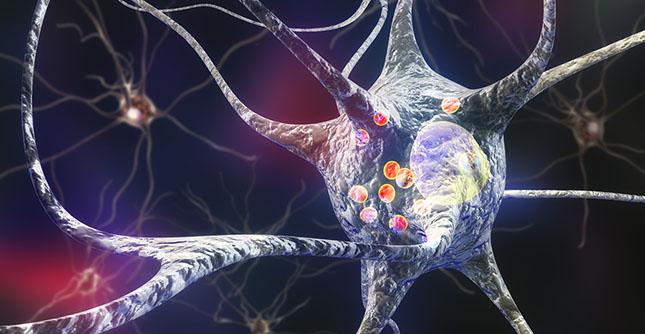 Jicht kan het risico op Parkinson verhogen